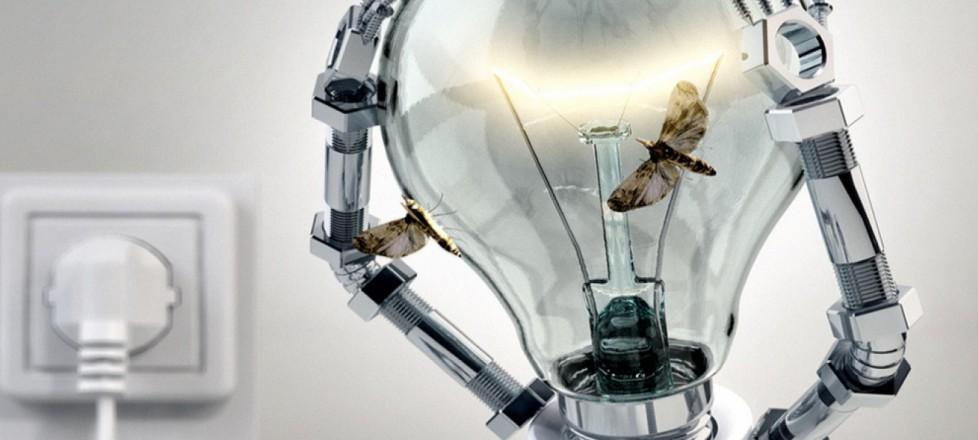 Para pensar em inovação, é preciso primeiro organizar o básico