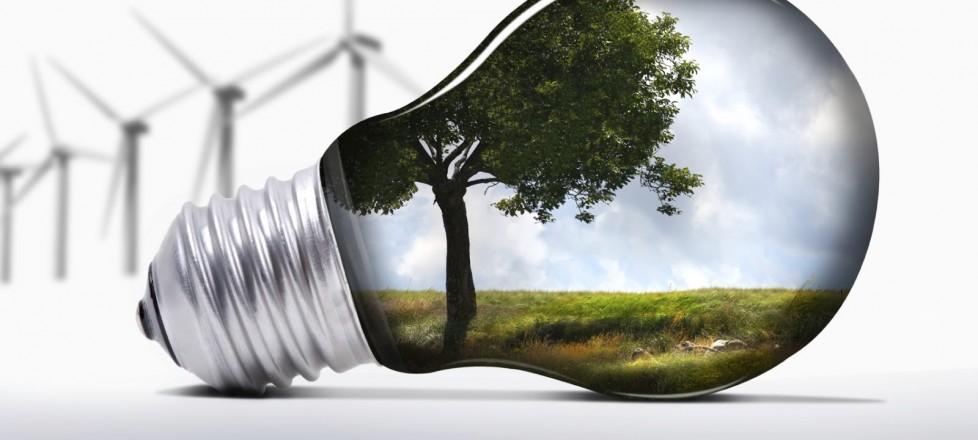 Cinco dicas para a criação de um ambiente que cultive a inovação