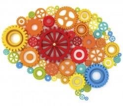 Nos Diálogos de Inovação, especialista em neurociência vai debater comportamento coletivo